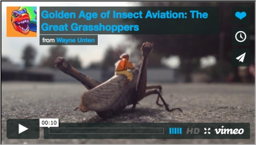 Golden Age of Insect Aviation : The Great Grasshoppers