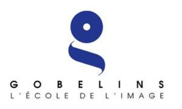 Les Gobelins, l'école de l'image