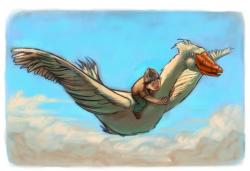 Illustration - Vogel Klein